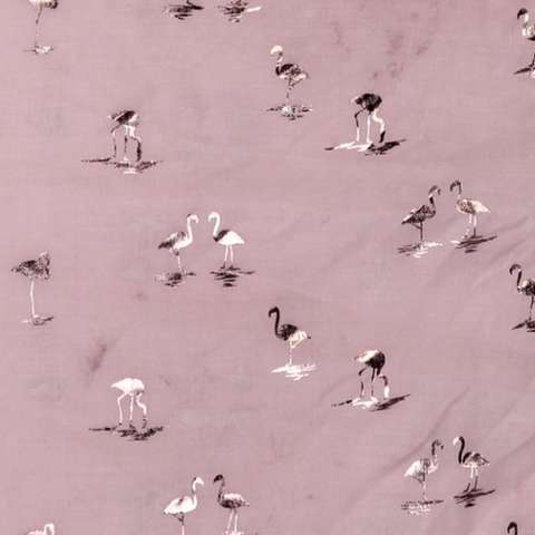 flamants roses feuilles d'or