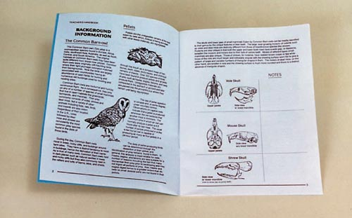 Owl Pellet Teacher's Manual | Fully Illustrated | Includes Reference Materials