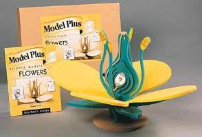 Flower Model | Hands-On Classroom Activities
