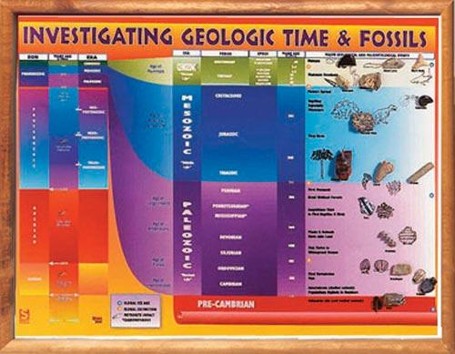 "Investigating Geological Time and Fossils Chart | 18"" x 24"" 