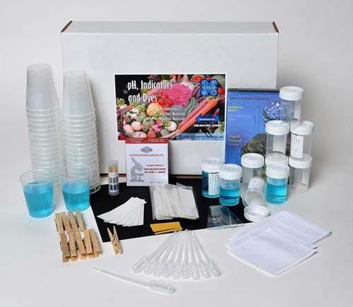 pH, Indicators & Dyes STEM Kit | Four Detailed Activities Included