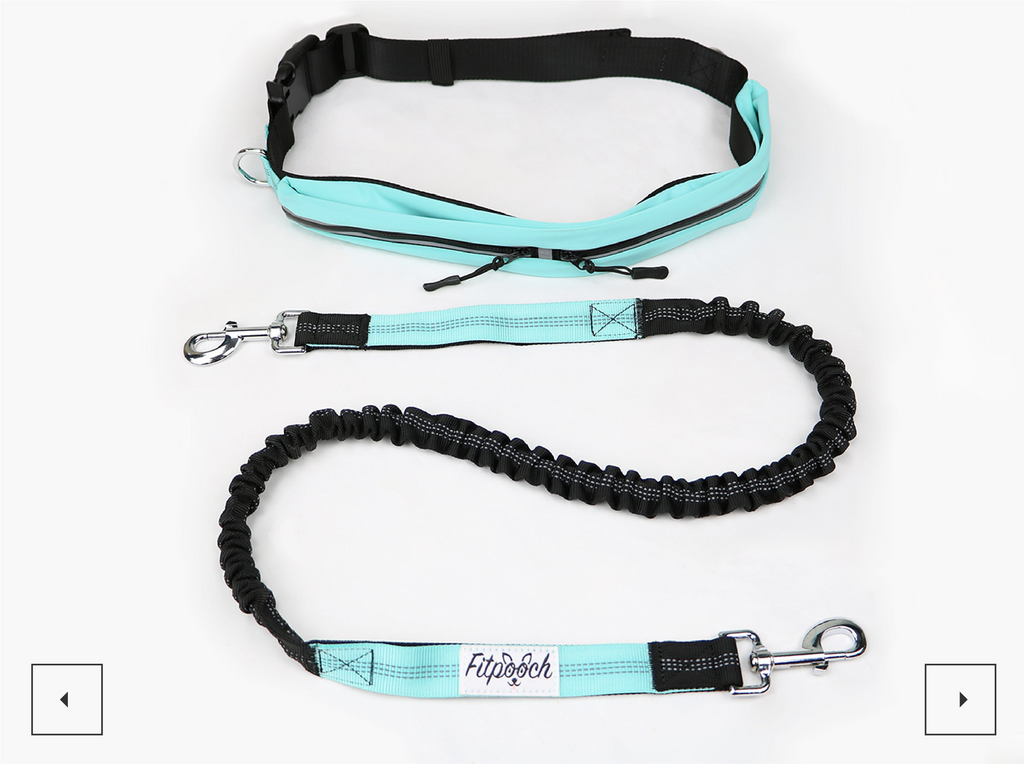 HANDSFREE WALKING / RUNNING DOG BELT AND LEAD