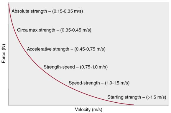 Figure 8.6 Velocity-based training curve illustrating the relationship between specific strength qualities and associated bar velocities during resistance training.