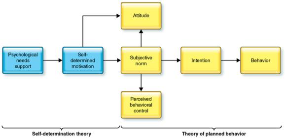 Figure 6.1 Model depicting integration of self-determination theory and the theory of planned behavior.