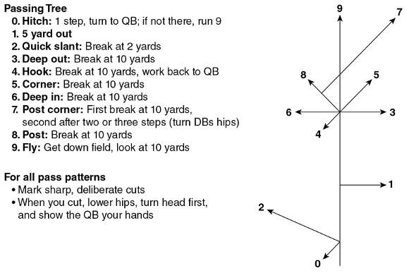 Figure 14.1 Running pass patterns.