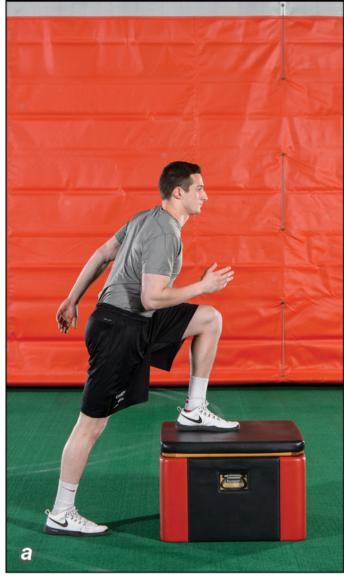 Figure 4.53 Single-leg power hop.