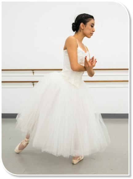The image of a ballerina dancing can be stored in episodic memory if a dancer has personally seen a performance of this work.