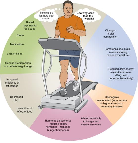 Figure 7.5 Many factors influence and complicate the energy balance equation regarding weight loss.