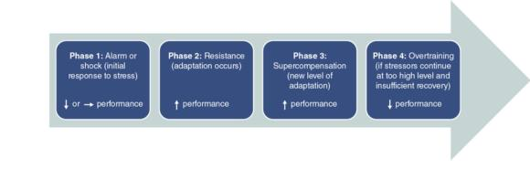 Figure 3.1 Model of the general adaptation syndrome.