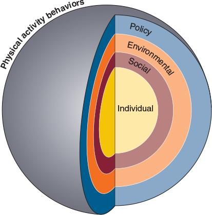 Figure 3.6Multiple levels of influence on physical activity behaviors: The social ecological model.