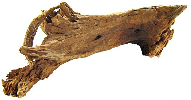 Blue Ribbon Natural Malaysian Driftwood