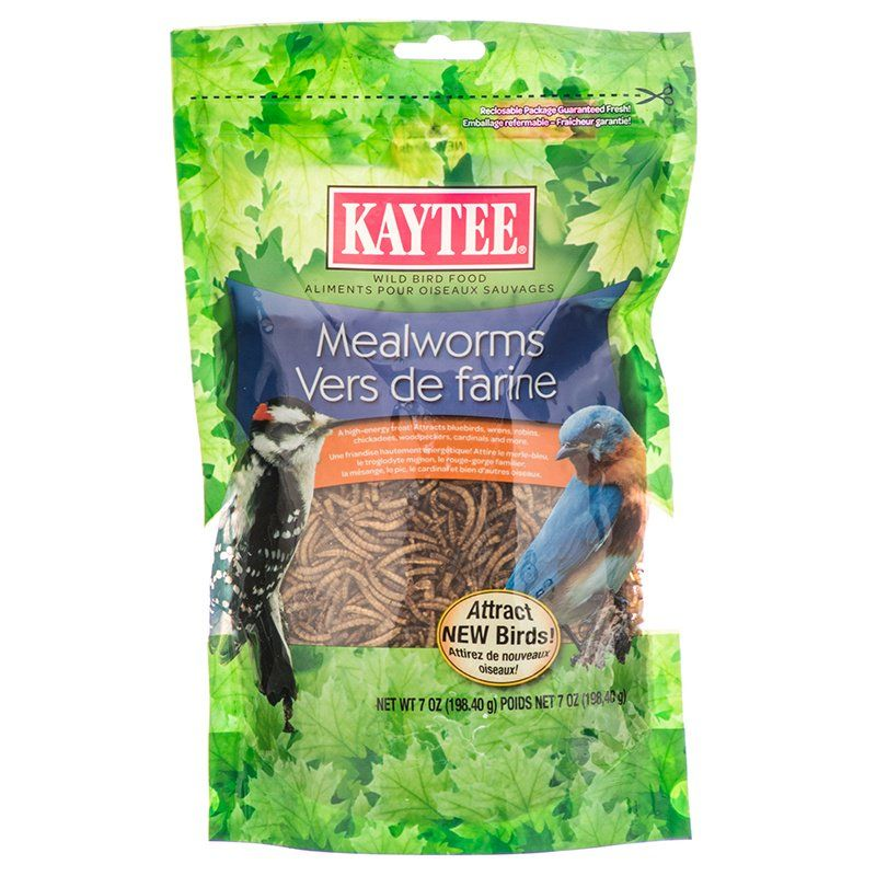Kaytee Mealworms Bird Food