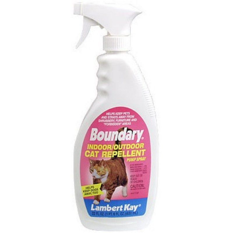 Boundary Indoor & Outdoor Cat Repellant Spray