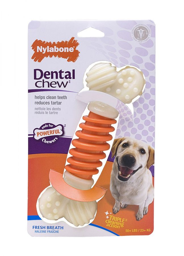 Nylabone Pro Action Dental Chew - Fresh Breath