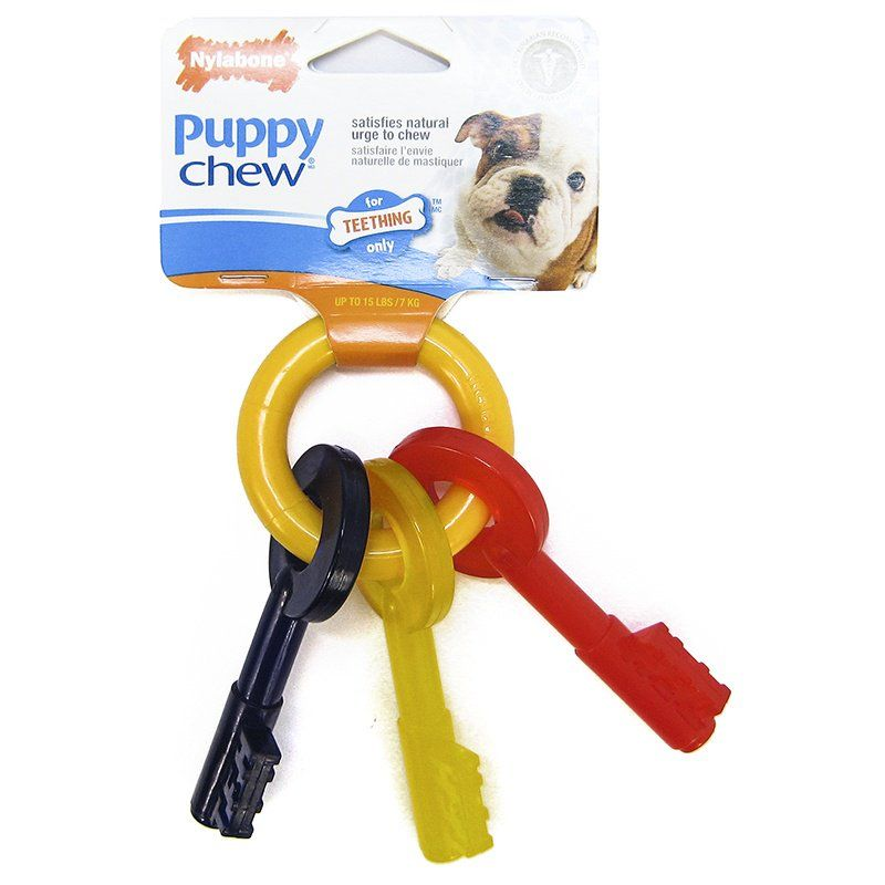 Nylabone Puppy Chew Teething Keys Chew Toy