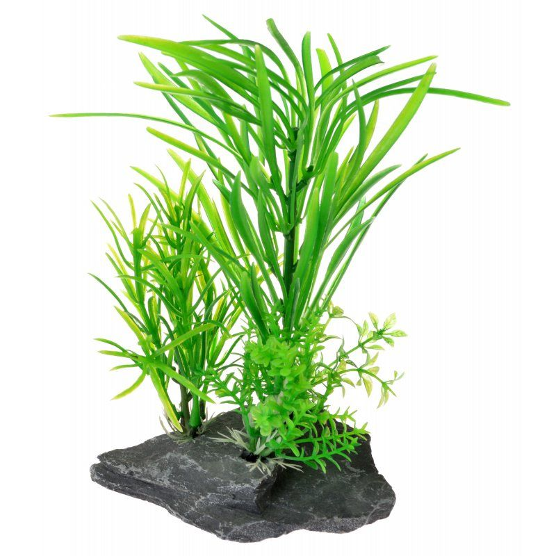Reptology Quartz Rock Reptile Plant