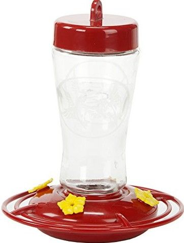 Homestead Etched Hardened Glass Hummingbird Feeder