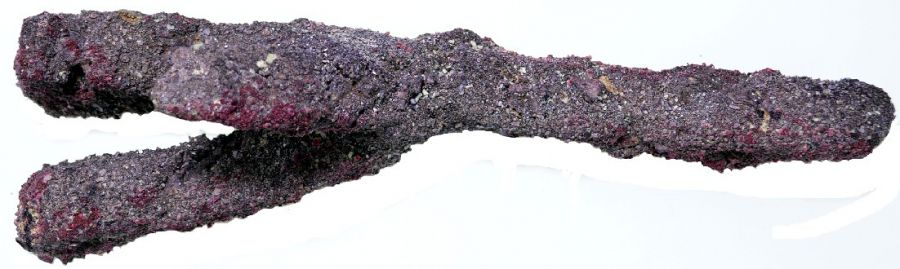 Caribsea Life Rock Branch for Aquariums