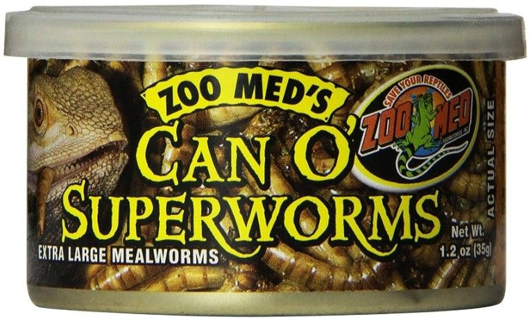 Zoo Med Can O Superworms Extra Large Mealworms