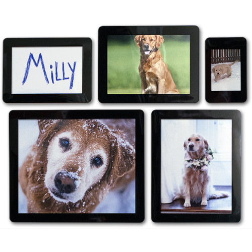 StickItFrame Collage Bundle in Black