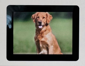 "Peel & Stick Photo Frames - Reposition 100s of times, re-stickable: no nails, tacks, DIY, black 5""x7"""