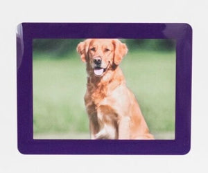 "Peel & Stick Photo Frames - Reposition 100s of times, re-stickable: no nails, tacks, DIY, purple 4""x6"""