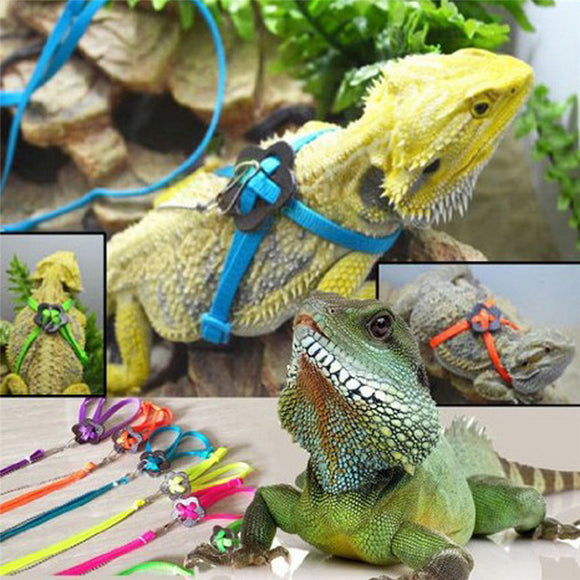 Adjustable Reptile Lizard Harness Leash Adjustable Hauling Cable Rope - M.R. Pet Supplies