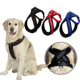 Adjustable Large Dog Harness Collar S/M/L/XL - M.R. Pet Supplies