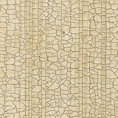 Schumacher Wallcovering - 5003761-Masaccio Ground - Champagne