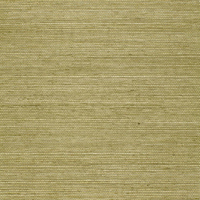Schumacher Wallcovering - 5004709-Haruki Sisal - Olive
