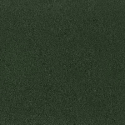 Schumacher Wallcovering - 5006214-Canyon Leather - Hunter
