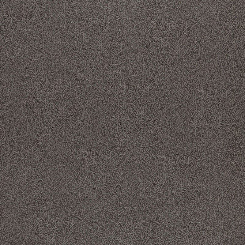 Schumacher Wallcovering - 5006216-Canyon Leather - Smoke