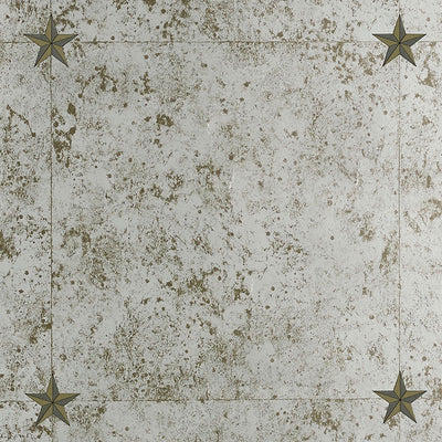 Schumacher Wallcovering - 5007760-Glass Paneling - Silver