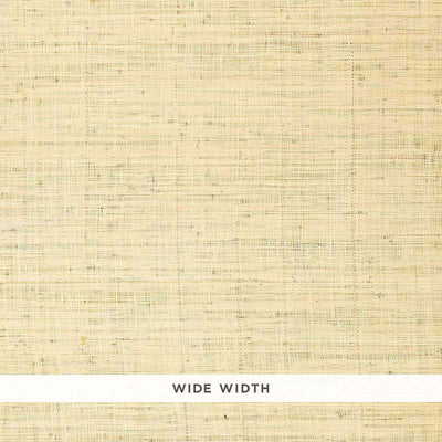 Schumacher Wallcovering - 528945-Bellezza Ground - Whitewash