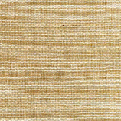 SCALAMANDRE WALLCOVERING-SC 0001WP88338-METAL SISAL-WHITE GOLD