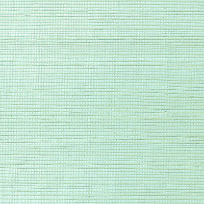 NICOLETTE MAYER WALLCOVERING-WNM0110META-METALLICA GRASSCLOTH-PARADISE