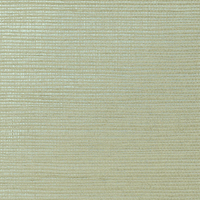 NICOLETTE MAYER WALLCOVERING-WNM0151META-METALLICA GRASSCLOTH-JEEP