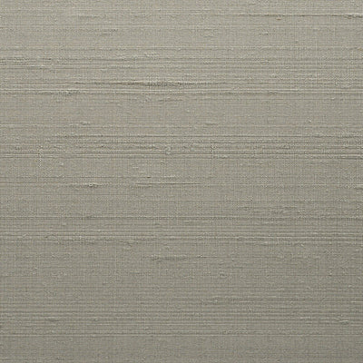 SCALAMANDRE WALLCOVERING-WTT651270-CHANDRA SILK III-SPEARMINT