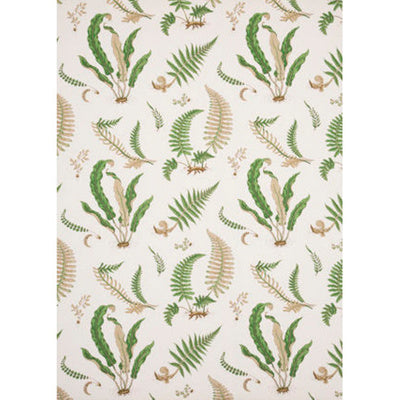 G P & J Baker Fabric - Ferns - Linen - Stone/Green