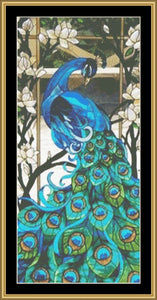 2020 PEACOCK COLLECTION - PC06