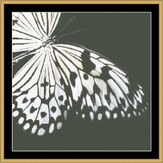 BLACK & WHITE BUTTERFLY II BUTC-27 - Mystic Stitch Inc...