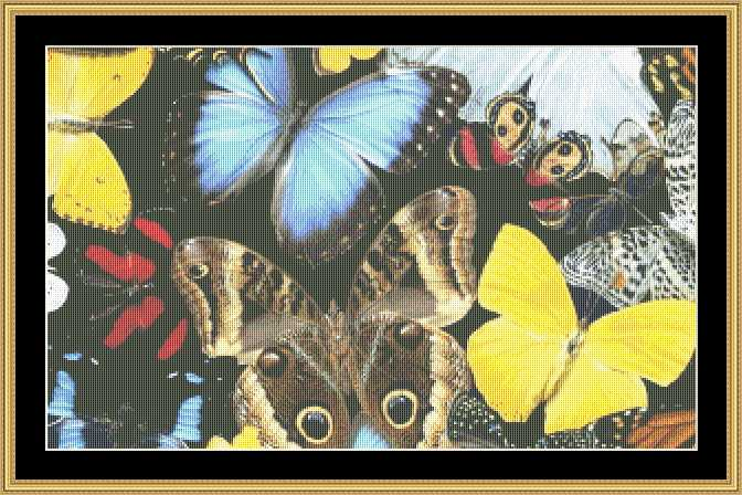 BUTTERFLY PASSION BUTC-60 - Mystic Stitch Inc...