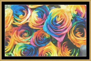RAINBOW ROSES  NFP-143