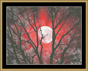 New Moon Series - Red Moon II   NFP-175