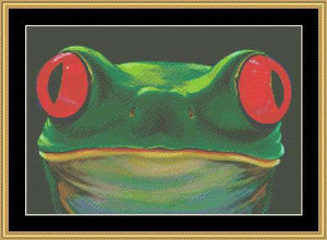 THE MANY FACES- FROG FACE  CLB-02