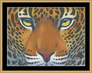 THE MANY FACES- LEOPARD  CLB-05