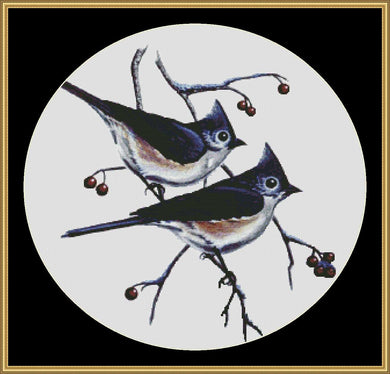 TUFFED TITMICE MM-42