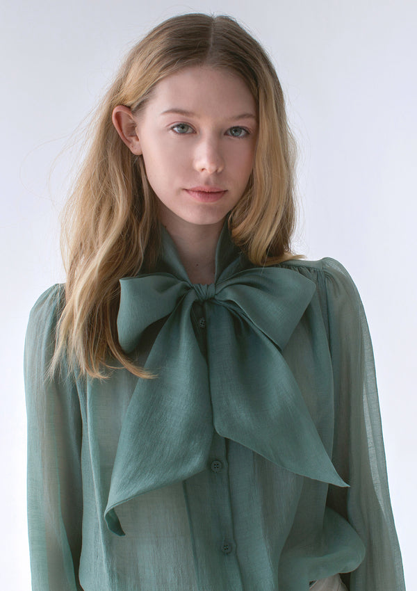 Sheer Bow Tie Blouse