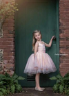 Rent The Prima Ballerina Gown - Size 5: fits 3-6