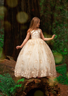 Rent The Odette Gown - Size 8/10